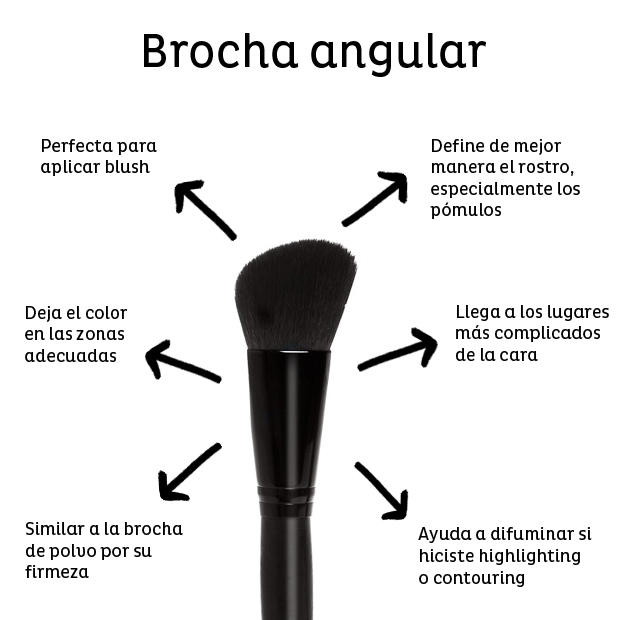 brocha-angular