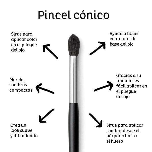 conico - Guía de Brochas y Pinceles y como usarlos